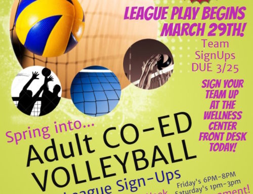 Adult Co-Ed Volleyball